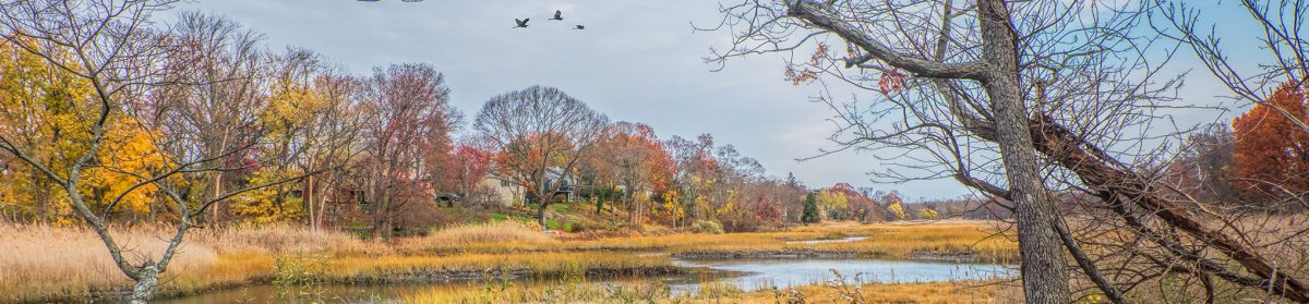Village of Mamaroneck, NY Comprehensive Plan Update